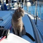 Zarina in barca